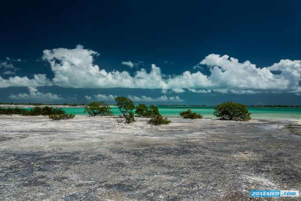 Christmas Island, Kiribati | photoreport