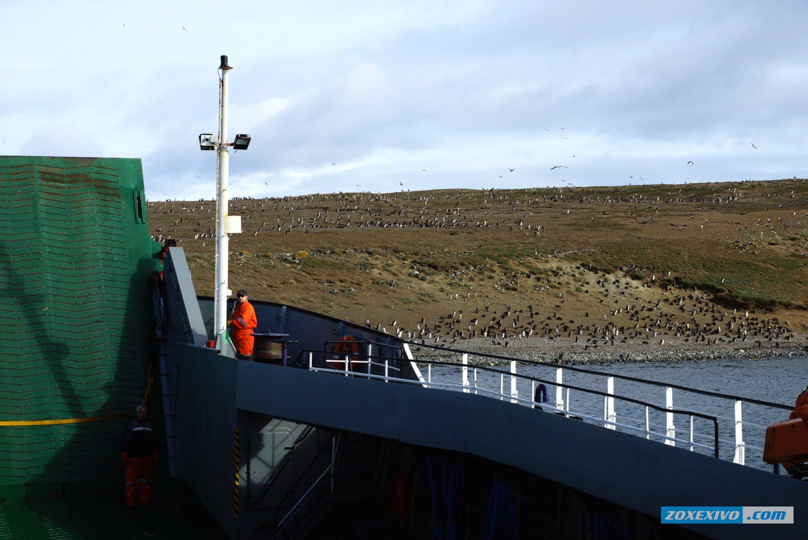 Ferry To Magdalena Island