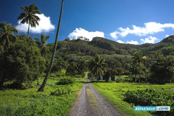Rarotonga, Cook Islands | photoreport